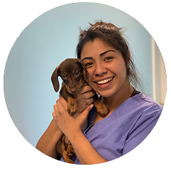 Daniela, Patient Care, Medical Inventory Manager