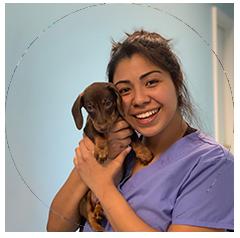 Daniela, Patient Care